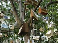 4_-_l_arbre_a_livres_-Genie_des_Jardins